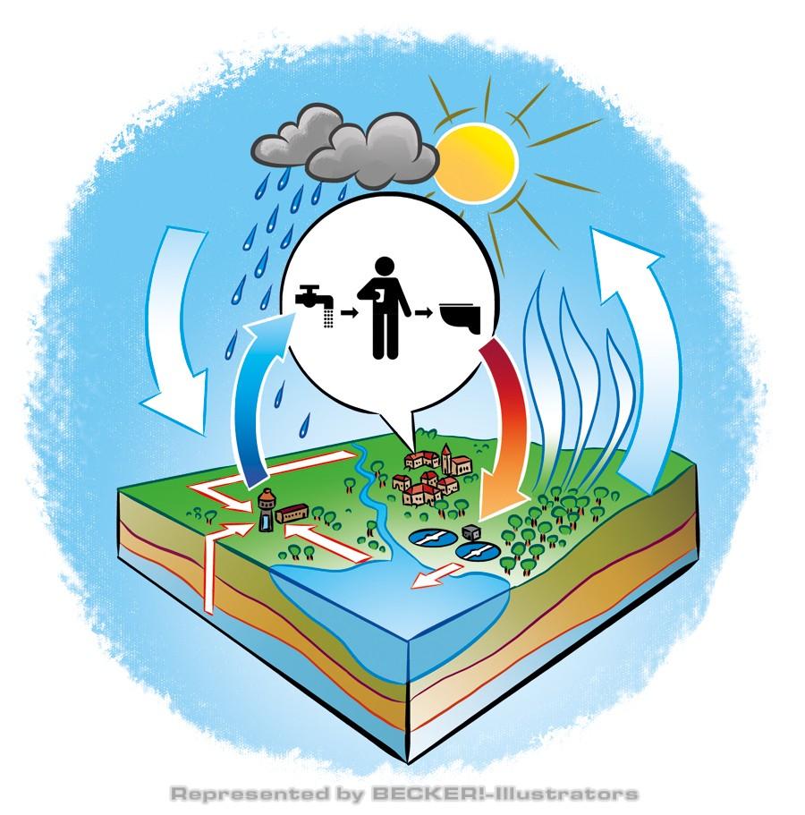 Der Wasserkreislauf von Hannes Neubauer