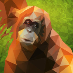 monkeyJungle2 von Christian Scharfenberg